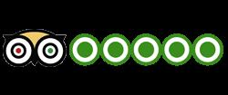 dive komodo with uber scuba tripadvisor