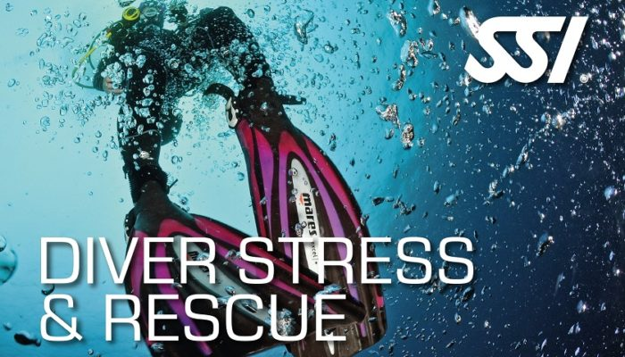 Diver-Stress-Rescue-SSI