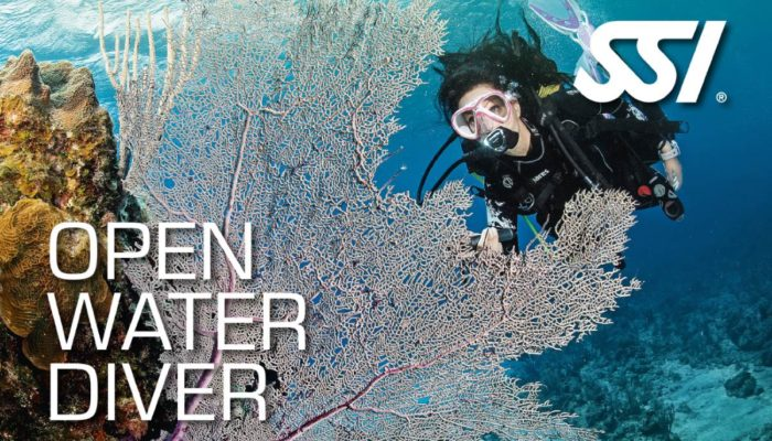 SSI-Open-Water-Diver